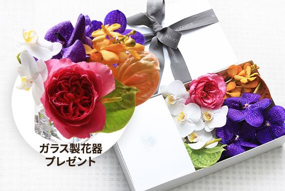 お花 C セット
