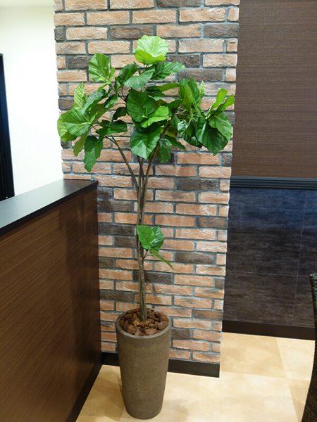 福岡市の人工樹木フェイク・観葉植物