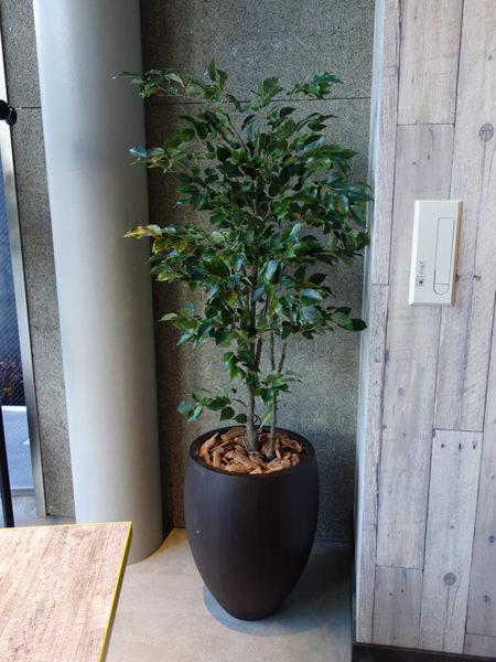 人工樹木・観葉植物リアル