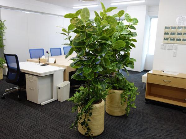 オフィス・病院の人工植物フェイクグリーン